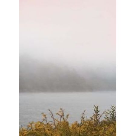Vissevasse :: plakat misty morning 01 50x70cm